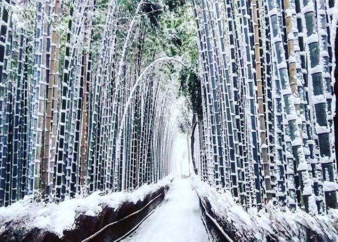 Заснеженный Киото - 5