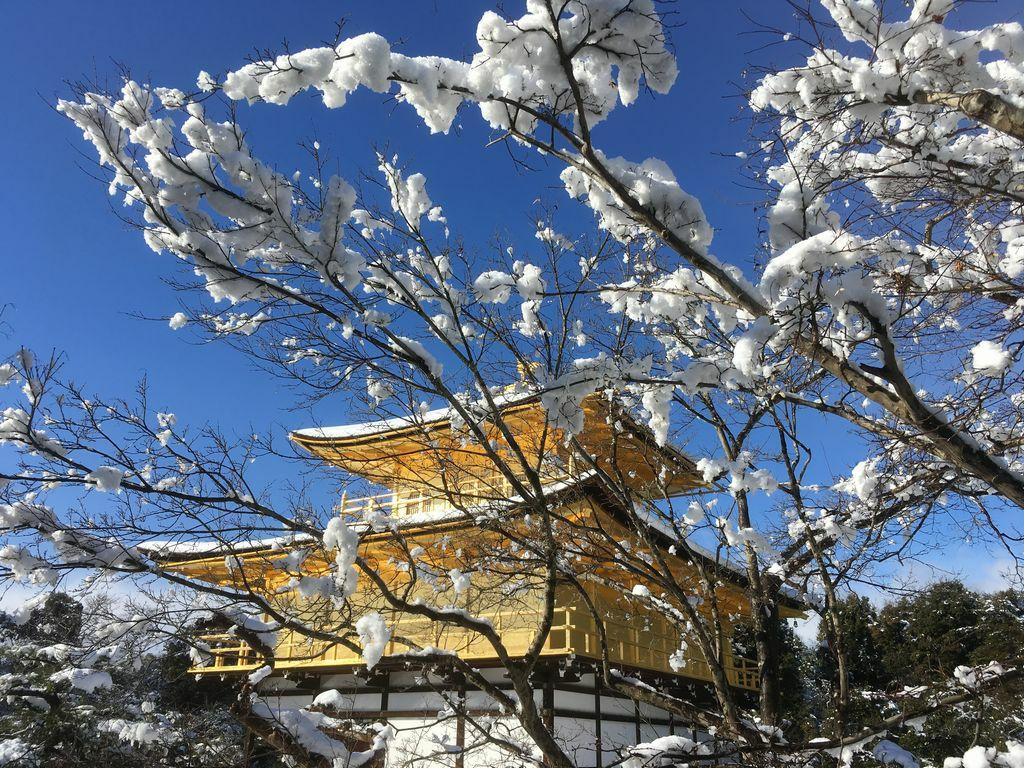 Заснеженный Киото - 14