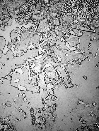 Слезы под микроскопом - 1