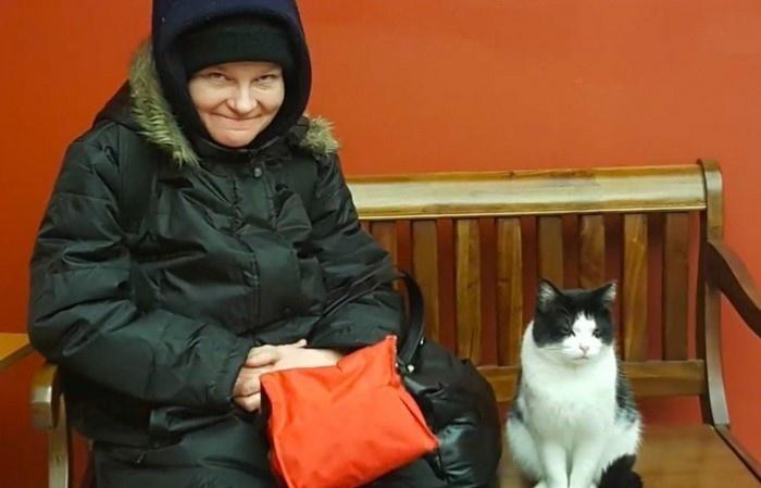Бездомная кошка в доме престарелых - 2