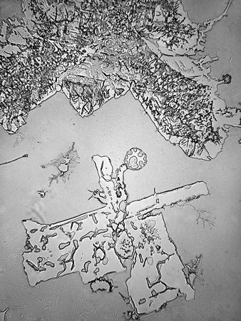 Слезы под микроскопом - 9