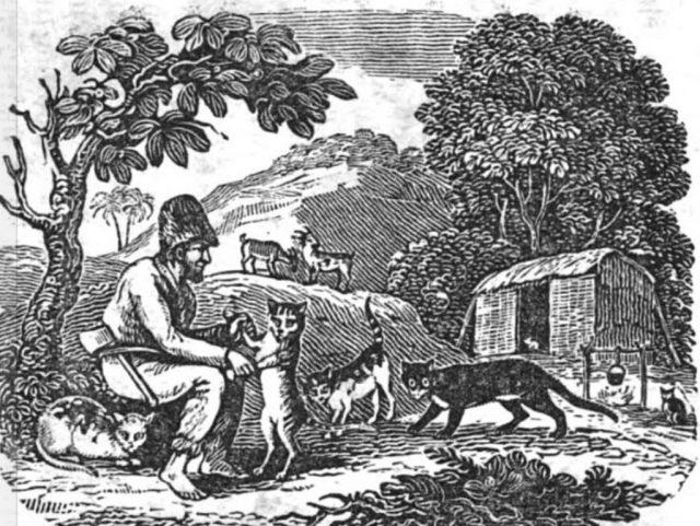a description of alexander selkirks adventure Kraske, robert marooned: the strange but true adventures of alexander selkirk, the real robinson crusoe illus by robert andrew parker clarion, 2005 [128p] isbn 0-618-56843-3$1500 reviewed from galleys r gr 4-7 robinson crusoe has attained a fame even beyond defoe's novel, but alexander selkirk.