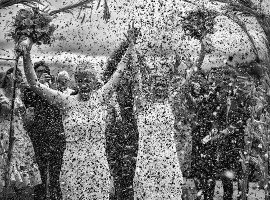 Свадьбы - 2