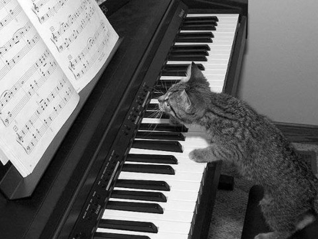 Приколы картинки с пианино, календарь