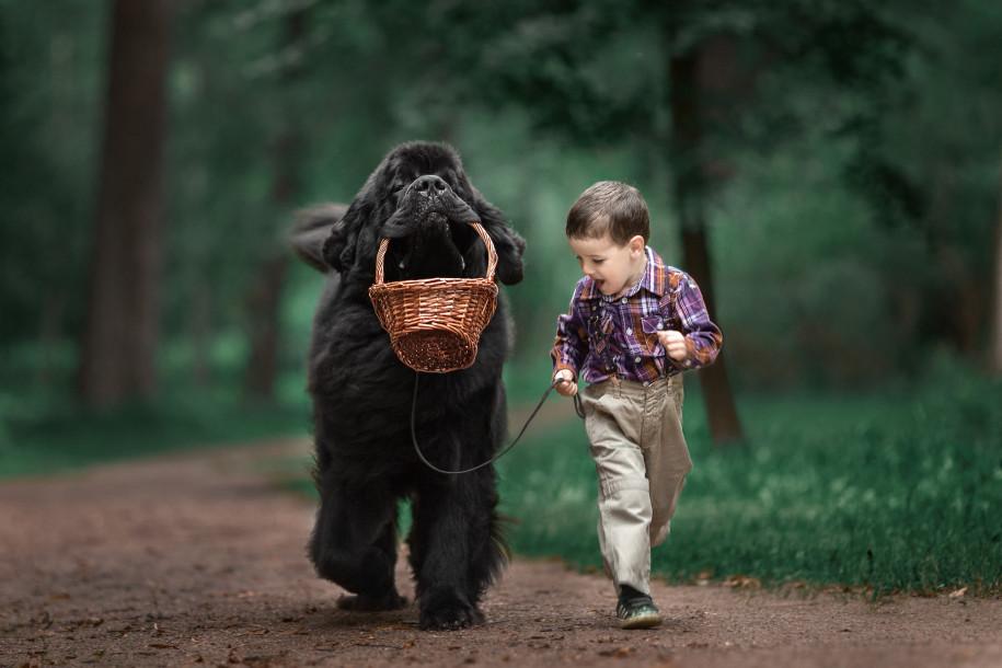 Смешные картинки человек и собака, доброй