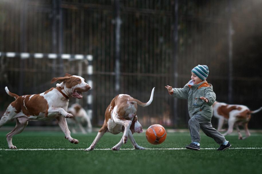 Собаки и дети - 5