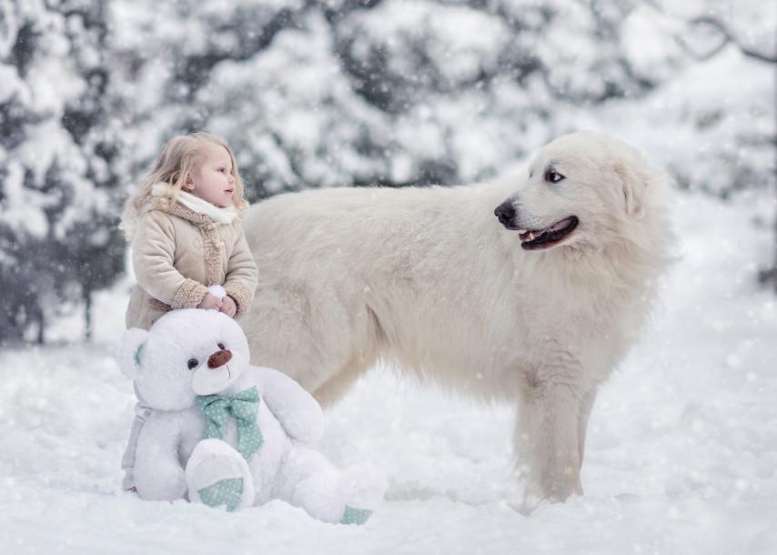 Собаки и дети - 6