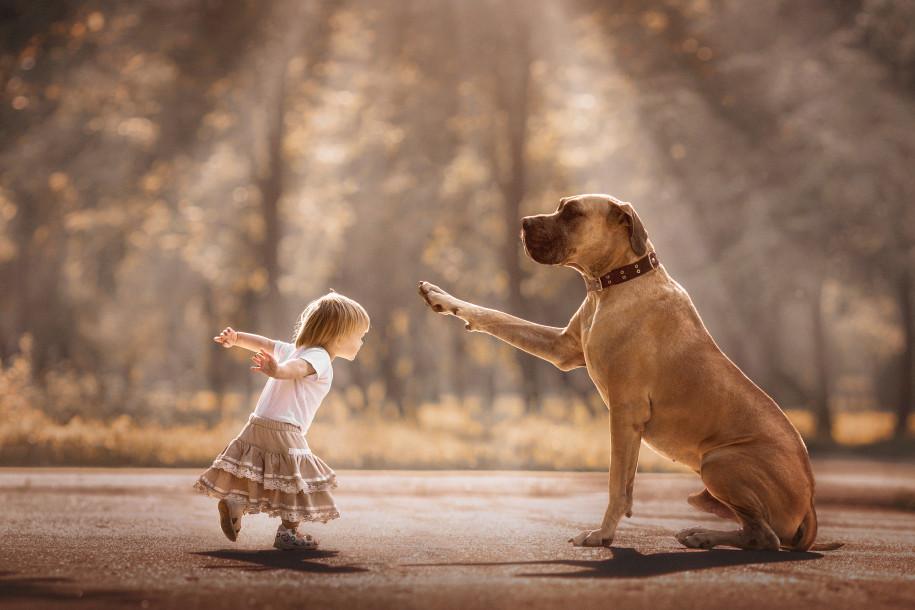 Собаки и дети - 8