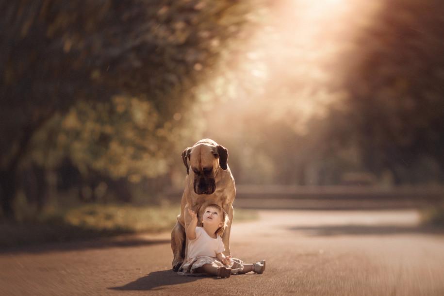 Собаки и дети - 9