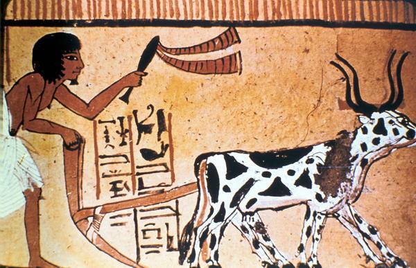 Египетские изобретения - 5